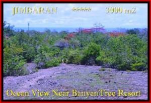 DIJUAL TANAH di JIMBARAN BALI 3.000 m2 di Jimbaran Ungasan