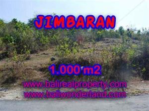 TANAH di JIMBARAN DIJUAL MURAH 10 Are di Jimbaran Ungasan
