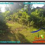 TANAH DIJUAL di JIMBARAN BALI 2,000 m2 Lingkungan perumahan Elite