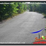 TANAH di JIMBARAN BALI DIJUAL 31 Are di Jimbaran Uluwatu
