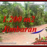 INVESTASI PROPERTI, DIJUAL TANAH di JIMBARAN BALI TJJI128A